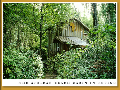 The African Beach Cabin in Tofino
